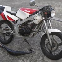 TZR50(3TU) 白赤
